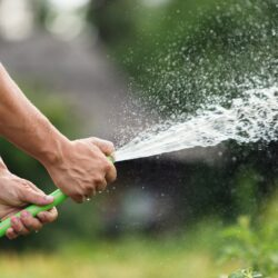 How Your Landscaper Can Help You Cut Your Water Usage