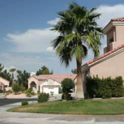 What Homeowners Should Know about HOA Landscaping Policies