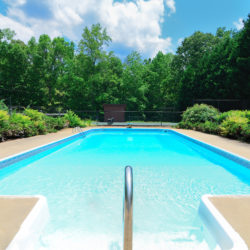 Factors to Consider When Choosing Plants for a Poolside Landscape
