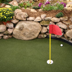 Backyard Putting Green? Yes, It's Possible!